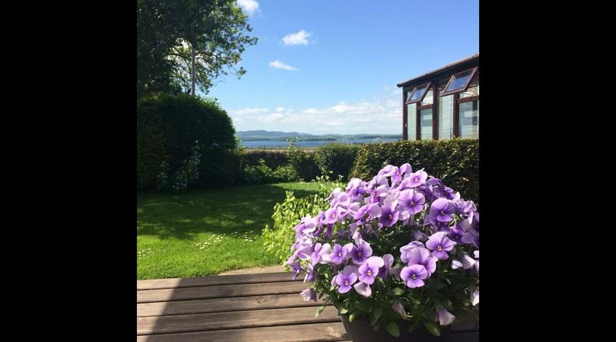 On the terrace in the garden on a perfect, sunny summers day.
