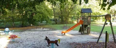Dordogne Gite Family Friendly Dog