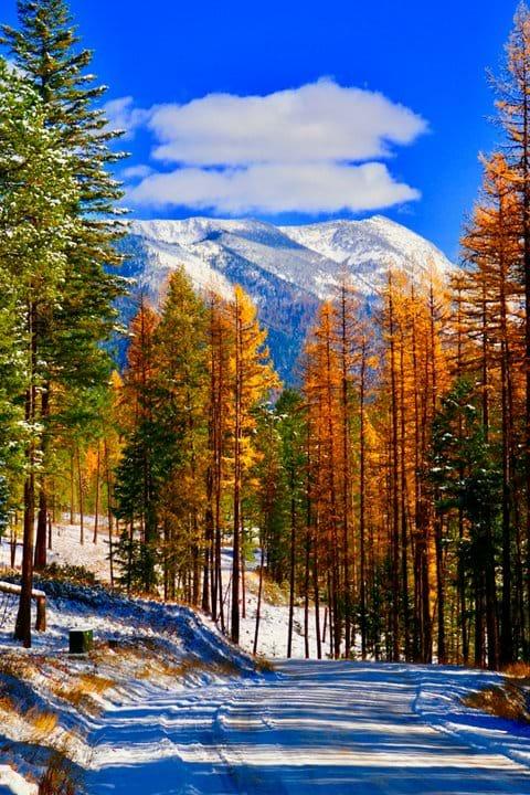 The secret season of fall in Sept/Oct