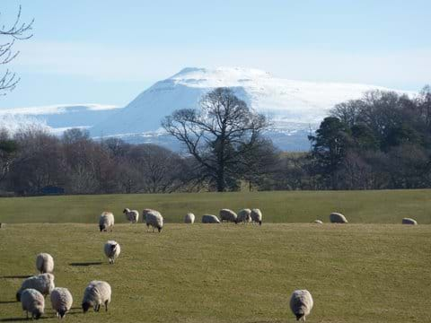 Ingleborough, Yorkshire Dales