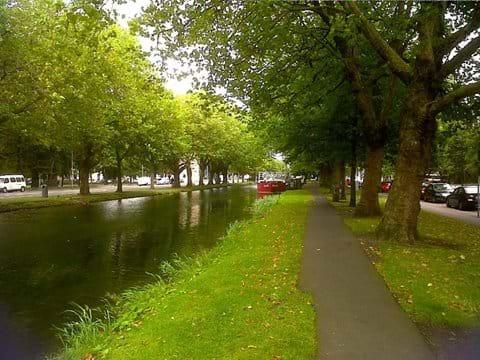 Walk along the Canal at Mespil Road. Farmer
