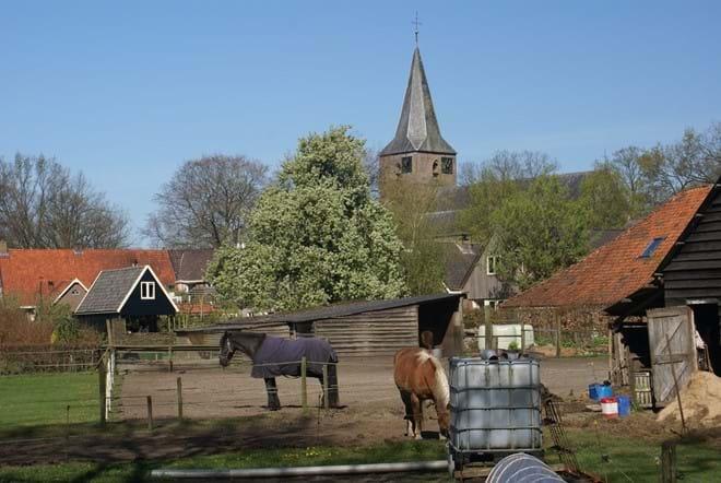 Fields next to the farmhouse