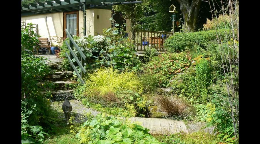 Cottage path over bridge and up steps