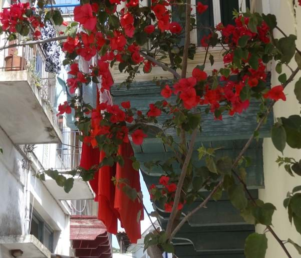 May 2015 - Somebody in Skopelos Town has bed linen to match the bougainvillea adjacent to their washing line!