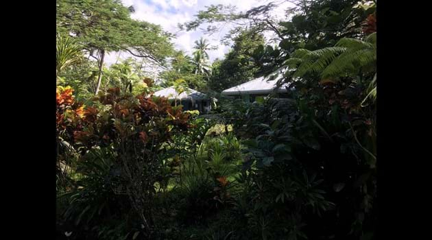 Our villas are nestled in amongst our tropical gardens.