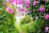 View of the cottage from the garden path
