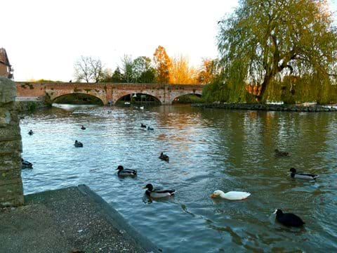 River Avon at Stratford