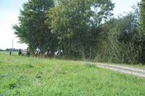 Horse riding in Sarthe