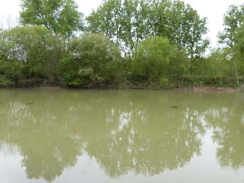 Our own 2 acre lake