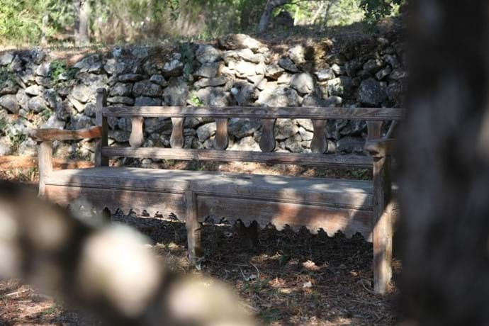 A seat in the shade of an old oak tree