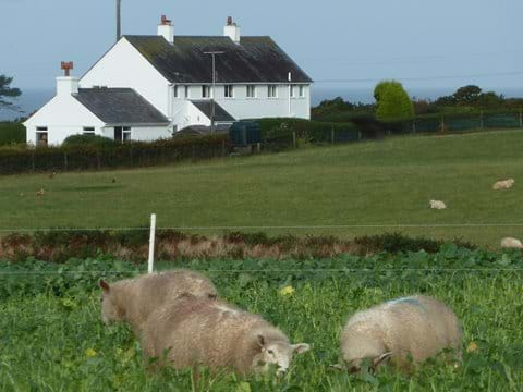 Smeale Farm Cottage with the sea behind