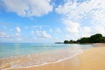 Driftwood Villa, Mullins, Barbados - Gibbes Beach