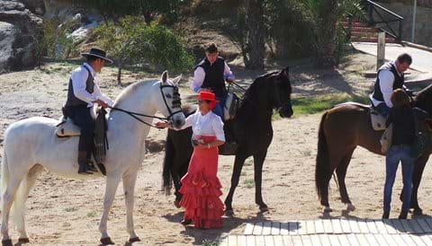 Horses on Terreros beach