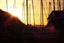 Aberaeron winter sunset through the masts