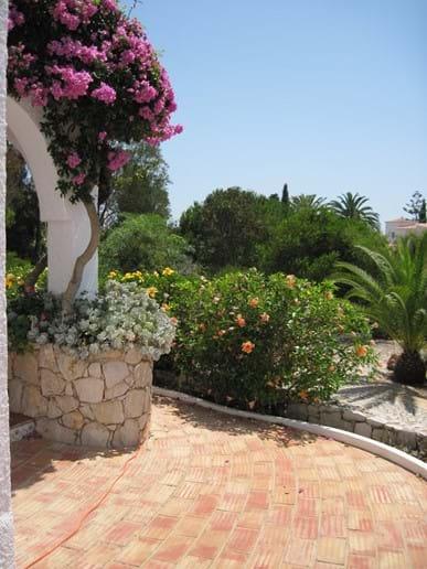 Large_gardens