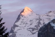 The magnificent Eiger.