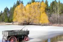 Winter colors in Bigfork