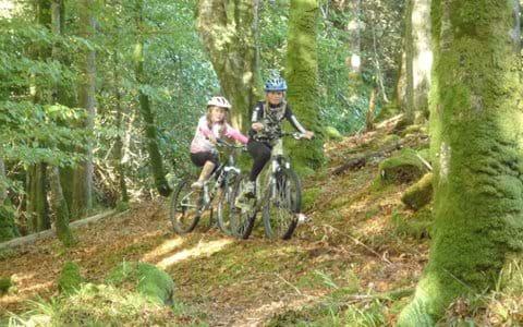 Mountain biking in the Bridgend Woods