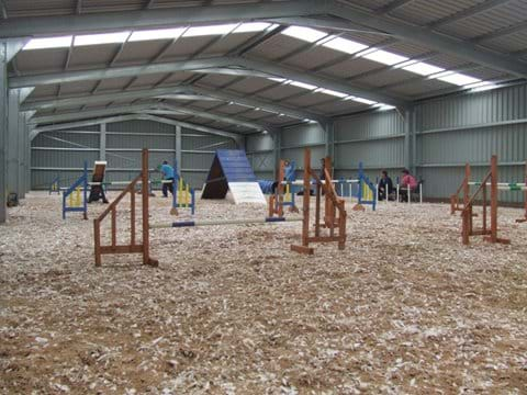 Indoor Agility Arena on site, available to hire or lessons