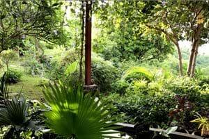 Tuin voor de woonkamer