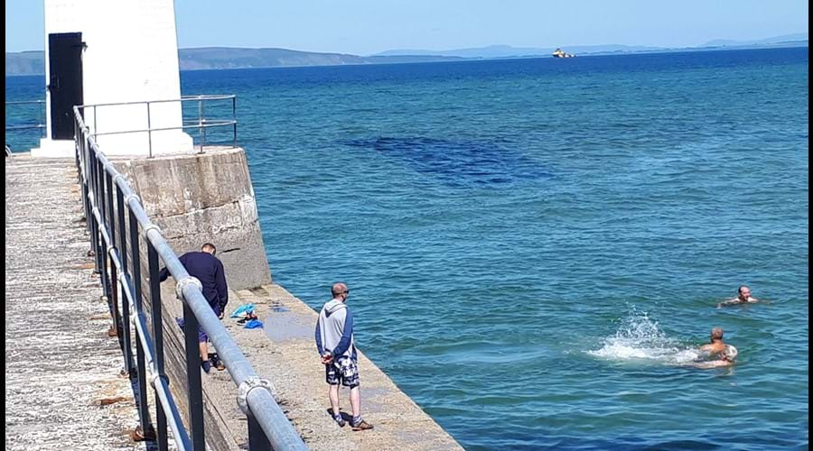 Keeping cool in the Moray Firth - July 2018