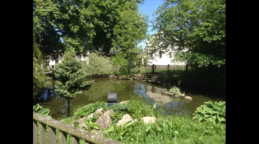 Duck Pond Whitbarrow