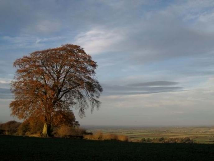 Autumn view from Pig Lane, Ilmington