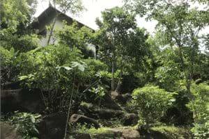 Huis gezien vanuit het lage deel van de tuin