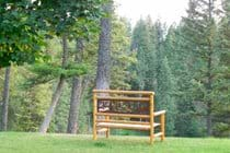 Front lawn bench overlooking pond