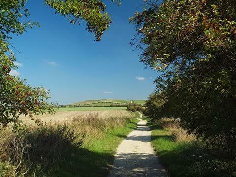 The Ridgeway - Steve Davison