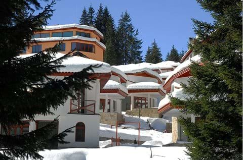 secluded ski chalets set in the pine forest