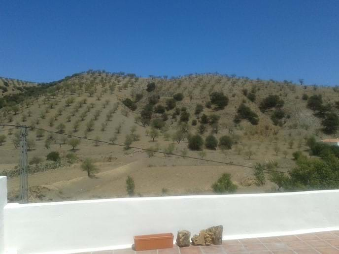 View from Terrace.