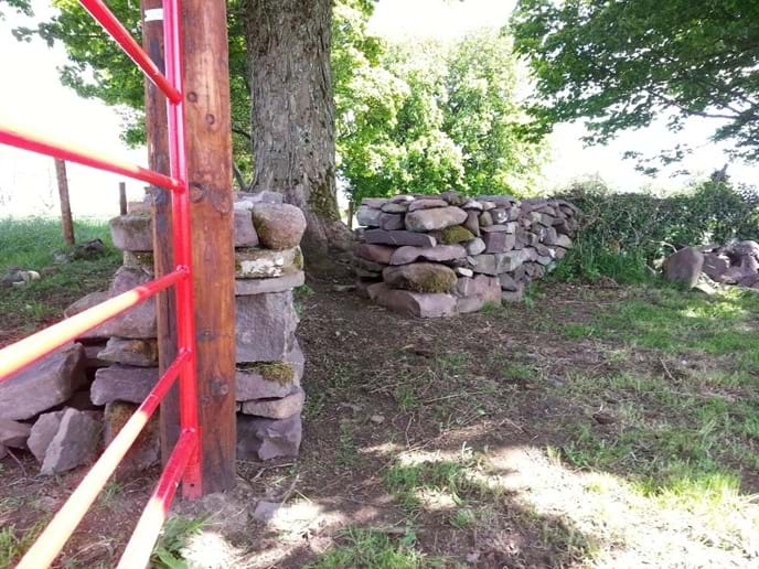 Walkway to the rookery through the dry stone walls.