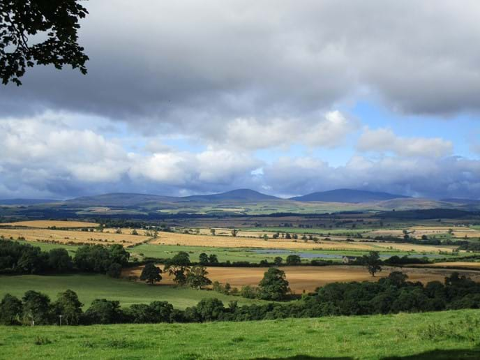 Walk in the Cheviot Hills