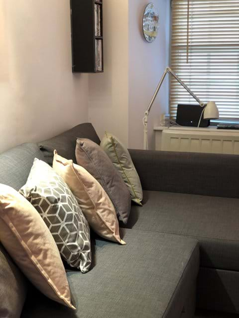 Open plan sitting/kitchen area with sofa bed