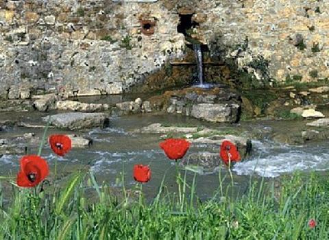 La Fontaine des Amours - very close to Rennes-les-Bains
