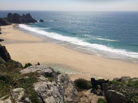 Local Logans Rock Beach-dog friendly