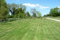 The Old Barns grounds