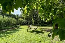 Cocketts Garden is great place to take a mug of tea - or a picnic.