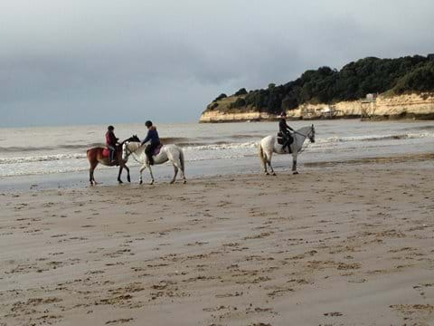 Plage des Vergnes, Gironde Estuary