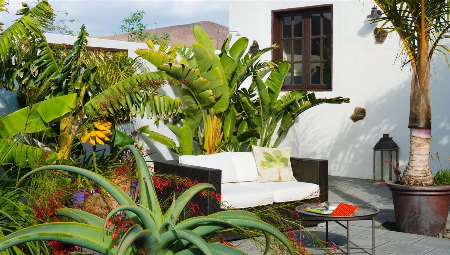 A comfy outdoor sofa surrounded by tropical plants at Finca Botanico in Lanzarote