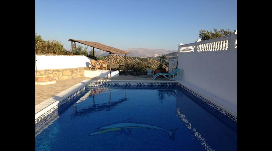 The large pool, you can use it when you like, shared with our house