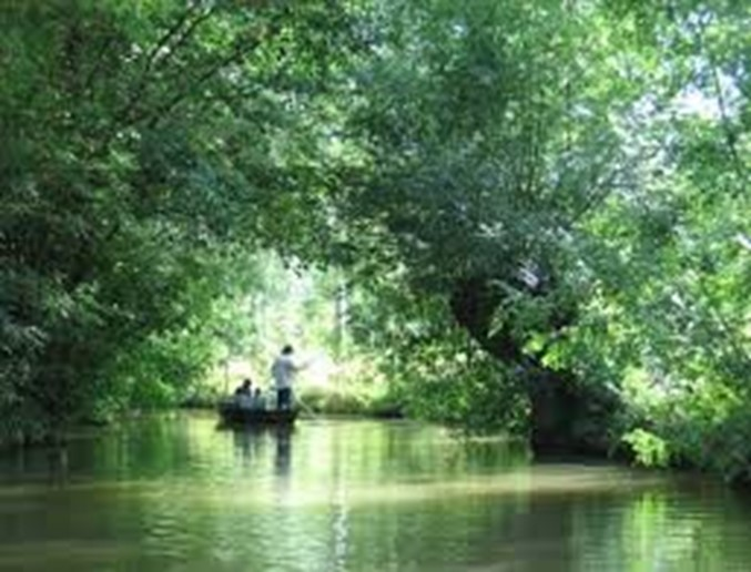 The Marais Poitevin, more commonly known as the
