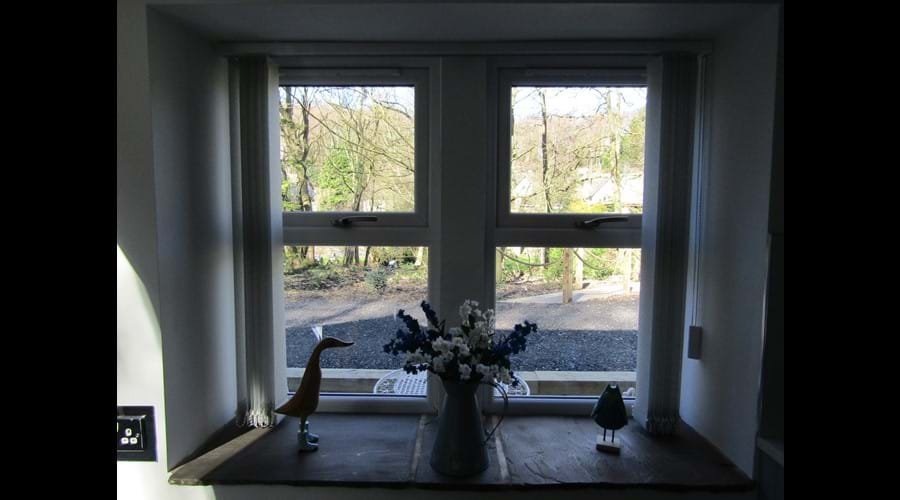 View to the river through the kitchen window