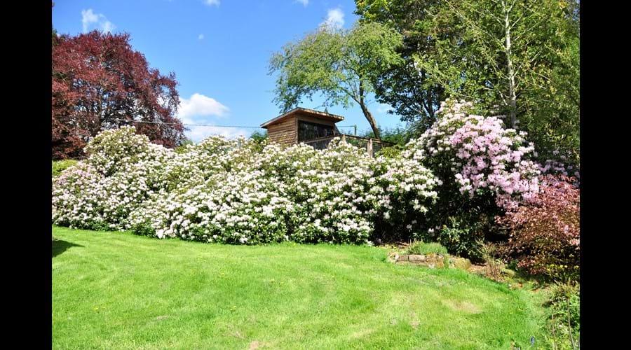 Tree House - South Facing Gardens