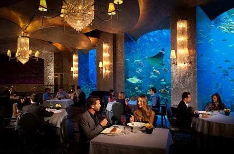 """The Lost Chambers Aquarium Restaurant The Atlantis"""