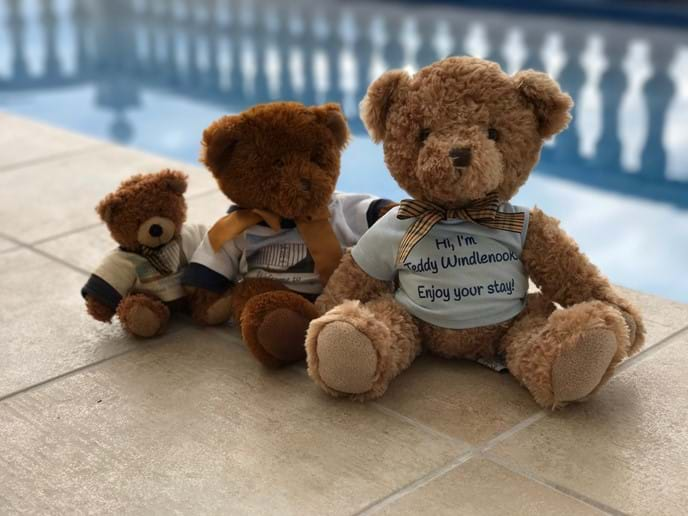 Three generations of Casa Windlenook teddy bears sitting by the pool