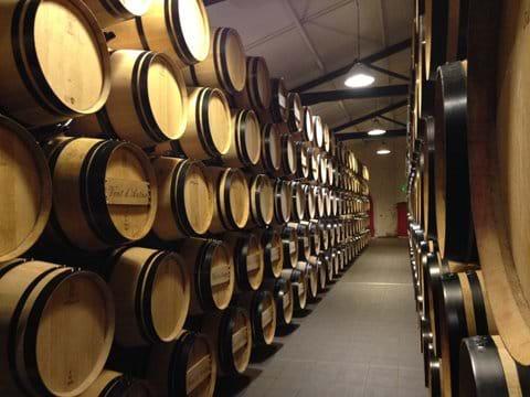 Faites une visite guidée des vins - Chateau du Pressac, St Emilion