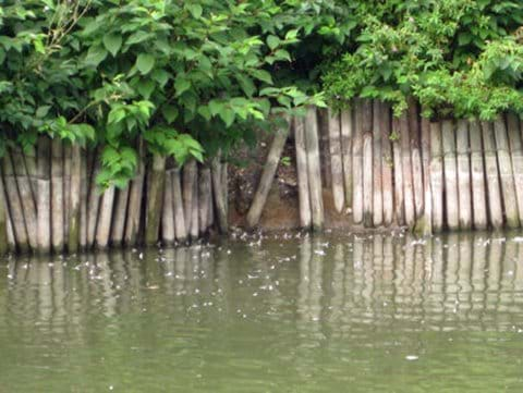 Pond showing steep sides in September 2010