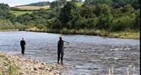 Fish on the River Tweed